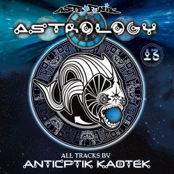 Astrology 13 (Printed Sleeve)