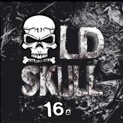 Old Skull 16 (Printed Sleeve)
